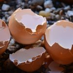 eieren in een brood bakje